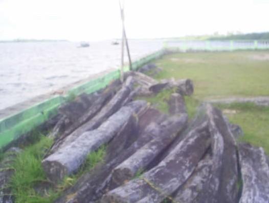 末端価格ウン千万? 大西洋に面した河口でのひとコマでした。