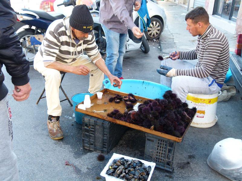Hier werden Seeigel verkauft