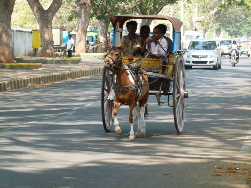 Leben in Mysore