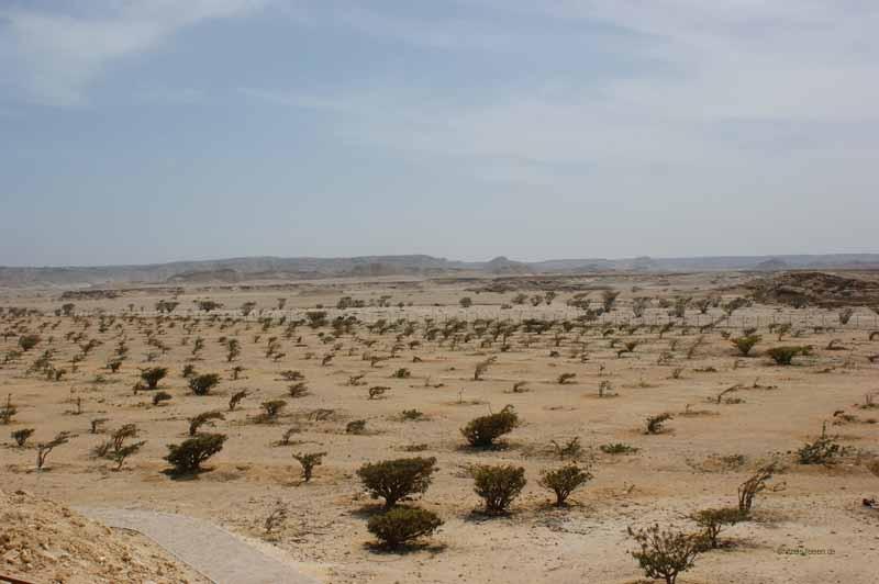 Wadi Dawka