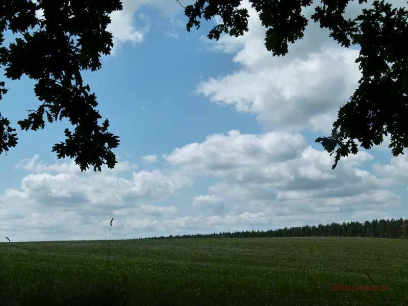 Felder, Wälder, Seen - ein traumhafte Landschaft