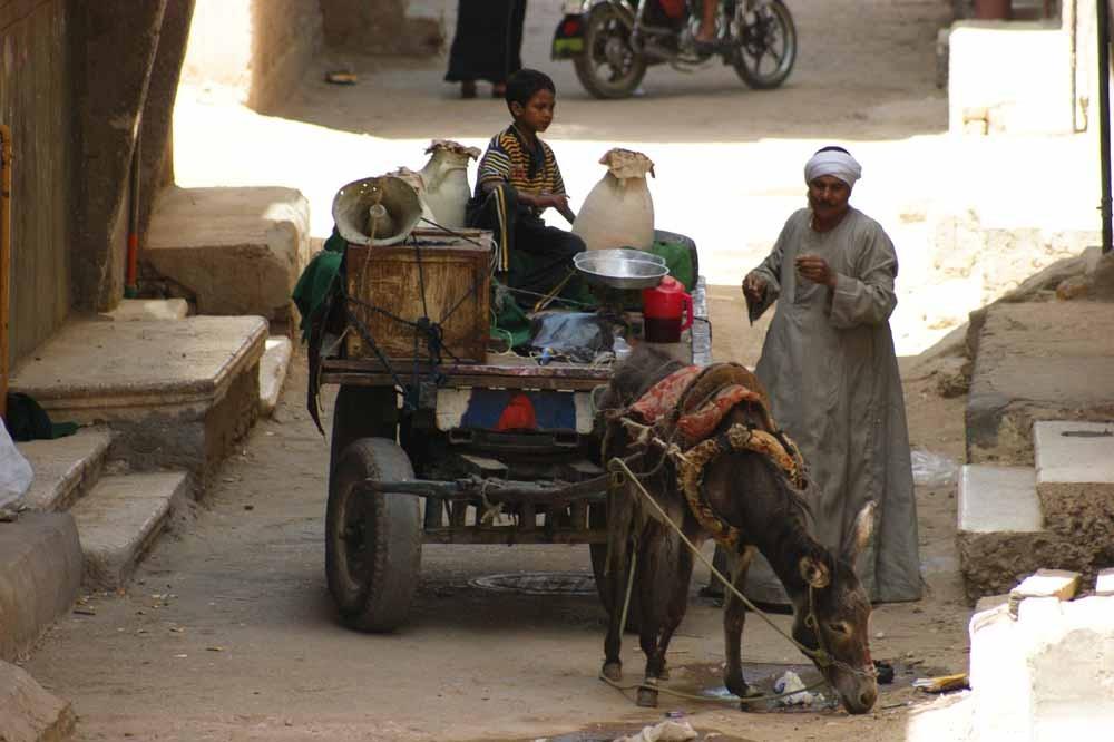 Leben in Luxor