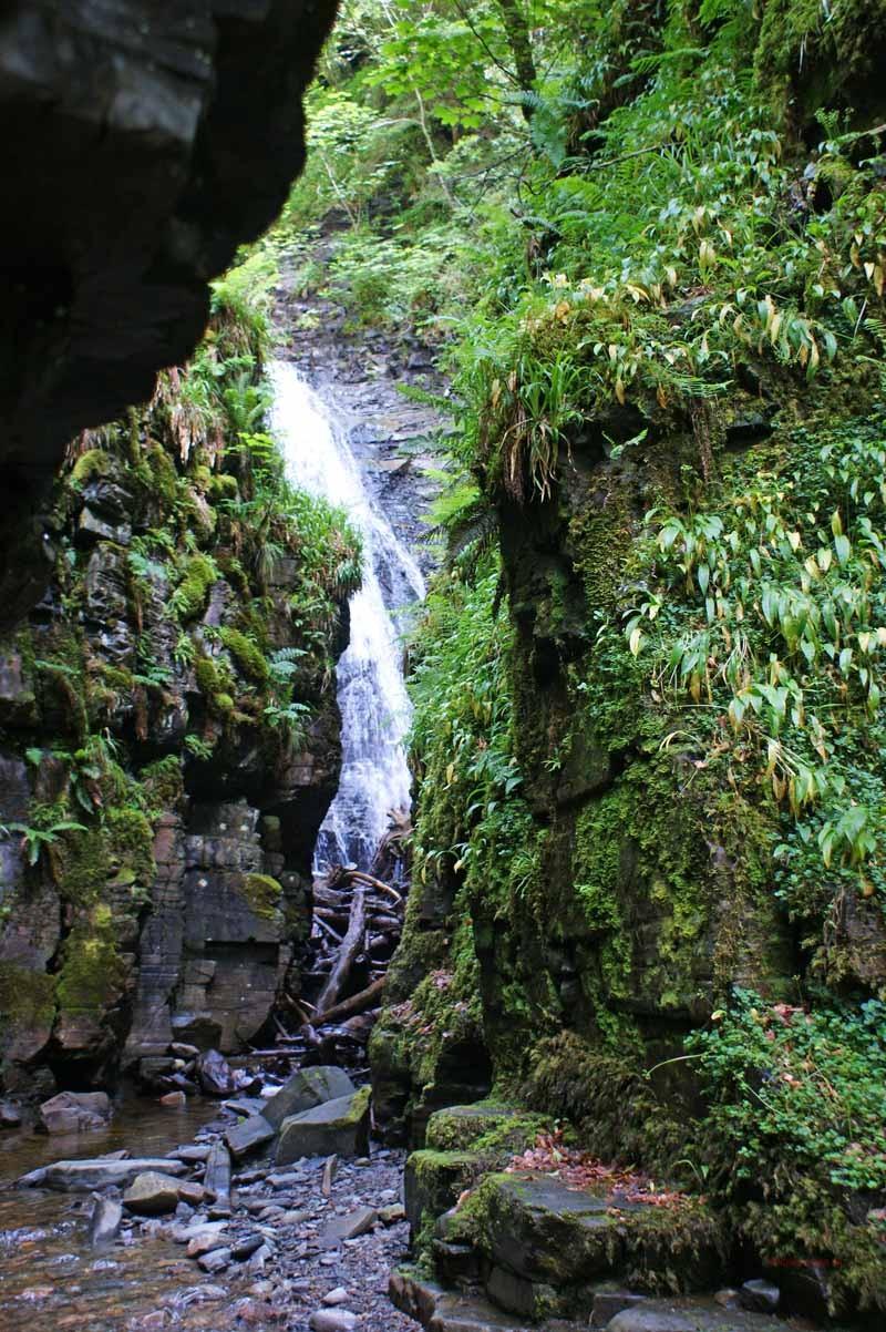 Wasserfall am Lael Forest