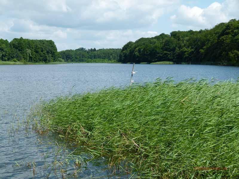 Schon wieder ein See