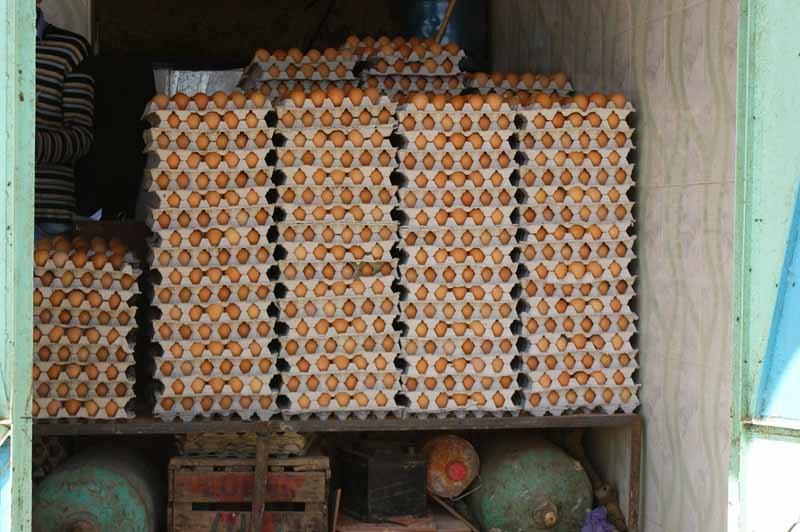 11.4. - Wer braucht so viel Eier?