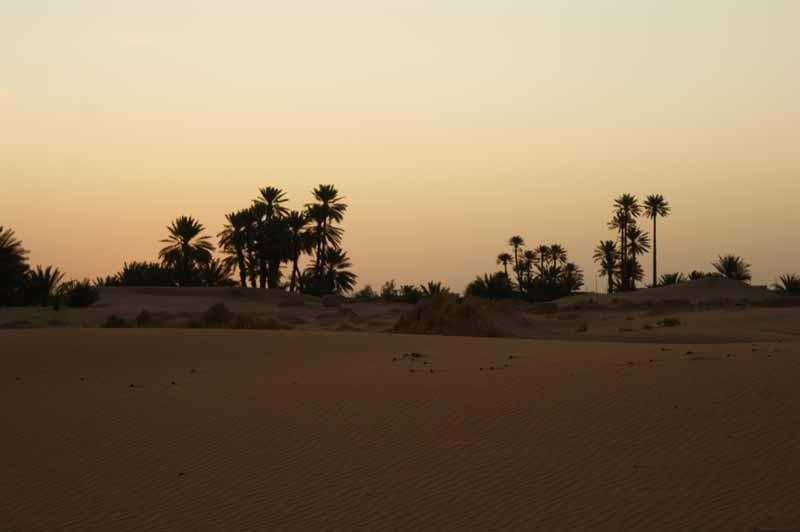 8.4. - Abends wird es kalt in der Wüste