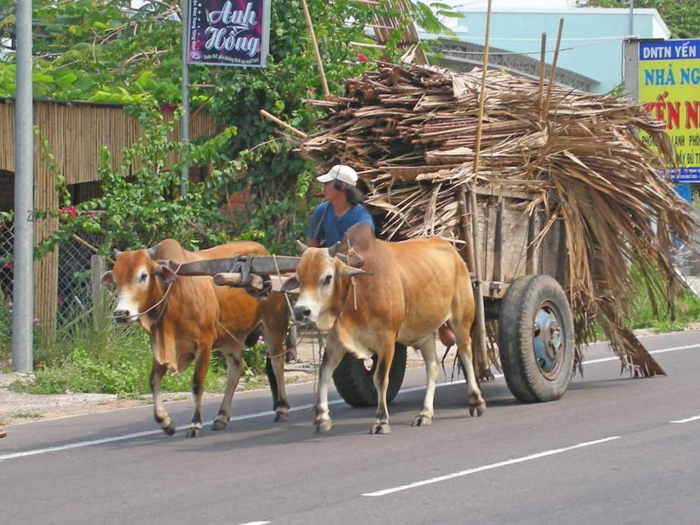 Transport auf dem Land
