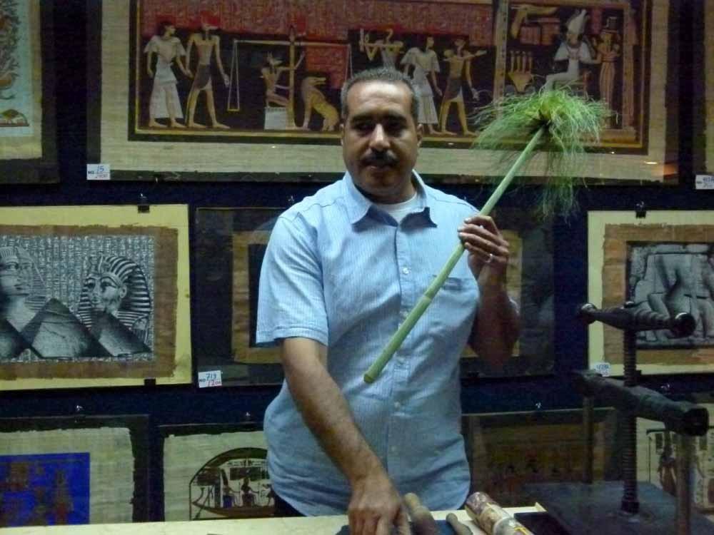 Die Papyruspflanze wird aufgeschnitten, gewässert