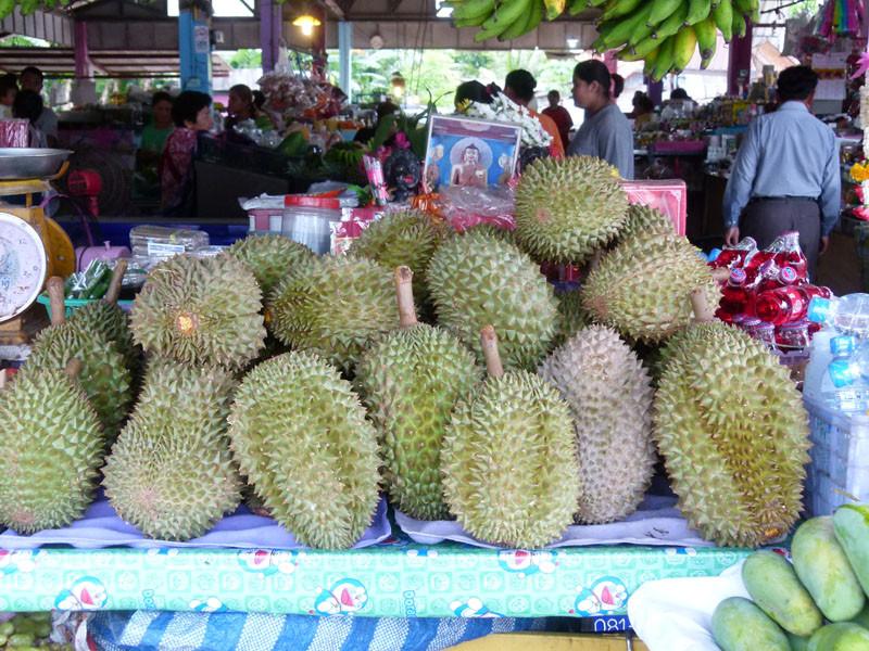 Durian oder Stinkefrucht - nichts für europäische Mägen