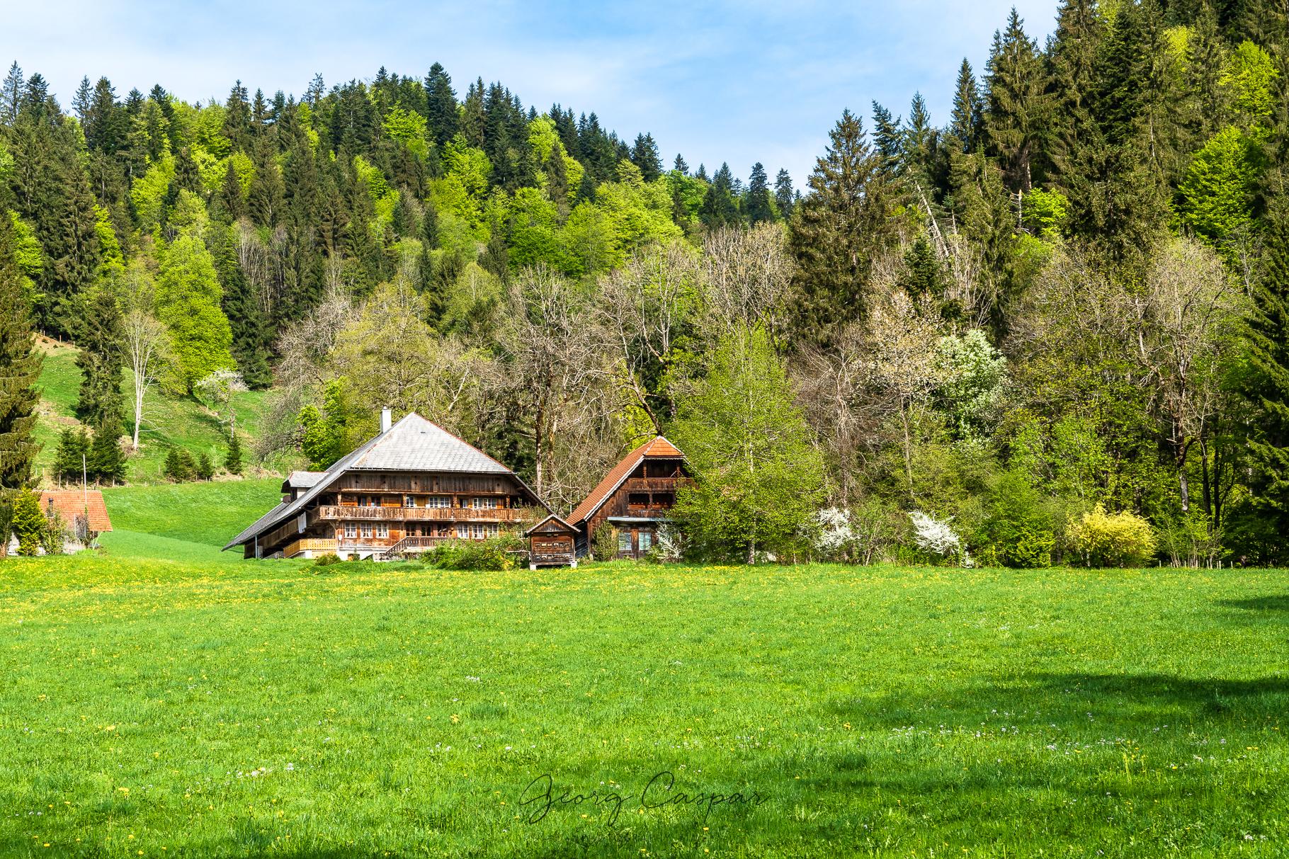 Unterwegs im Emmentaler Hügelland I