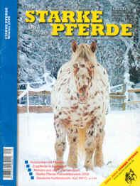 Erste Ausgabe über 100 Seiten! (2006)