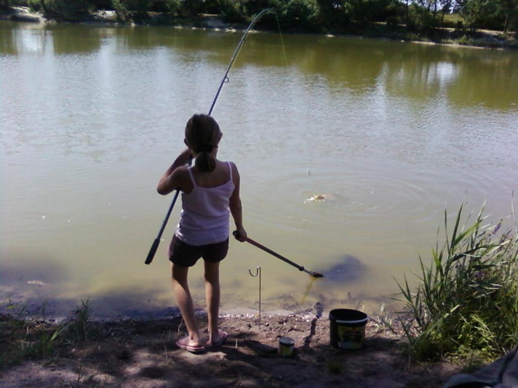 Les étangs de la Barreyre