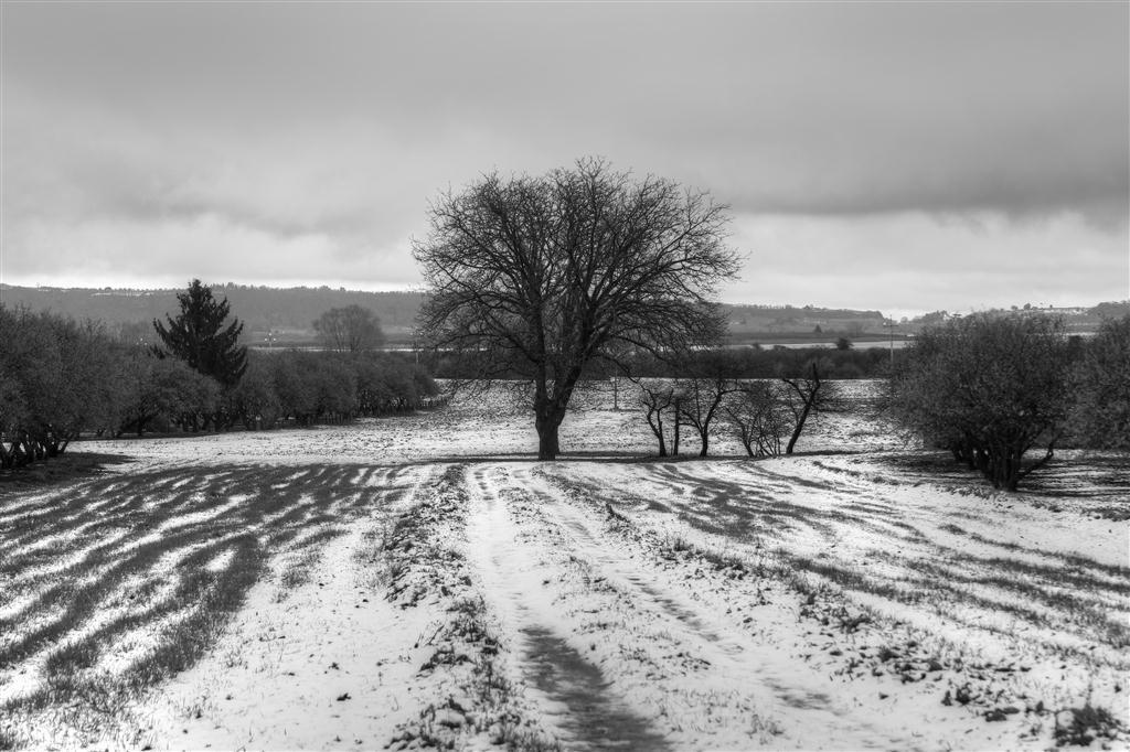 Un po' di neve