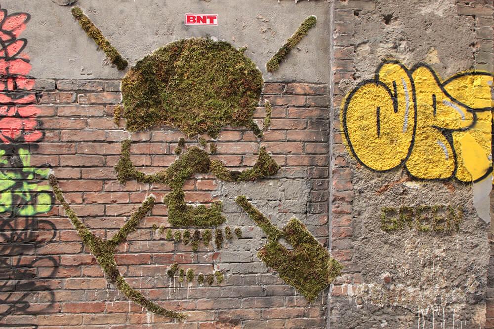 moss-street-art-ecolo-graffiti-mousse-tag.jpg