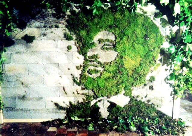 portrait-street-art-vegetal-ecolo-graffiti-tutoriel.jpg