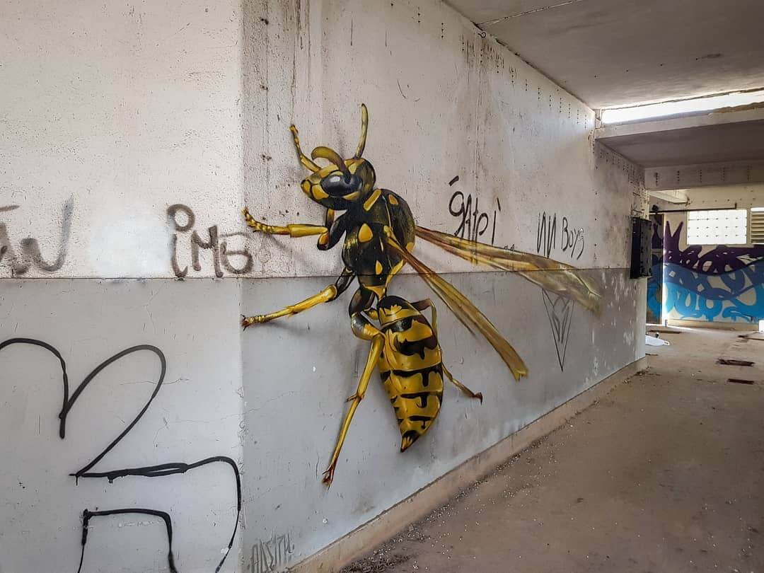 street-art-insecte-anamorphique-Odeith-best-of-2018.jpg