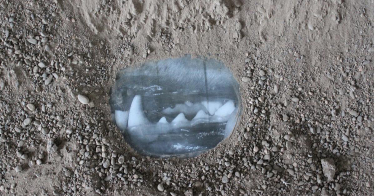 ''Molecular Vibration'' Jantsankhorol Erdenebayar - inchiostro, vetro e detriti - 2017