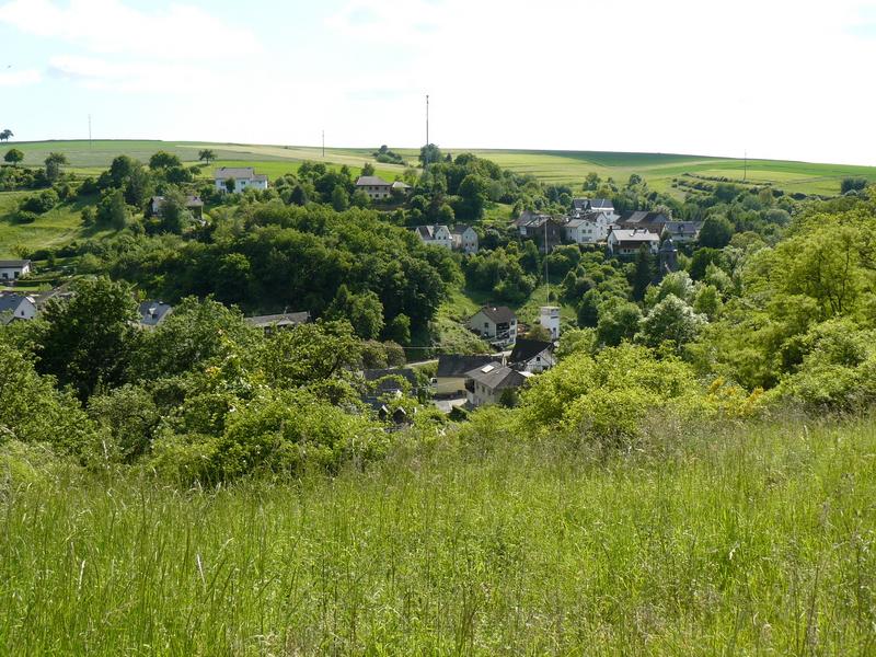 """Blick von der Burg über die Ortslage auf den """"Berg"""""""