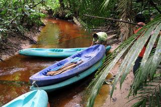 Amazonas Region Kolumbien Reisen Info