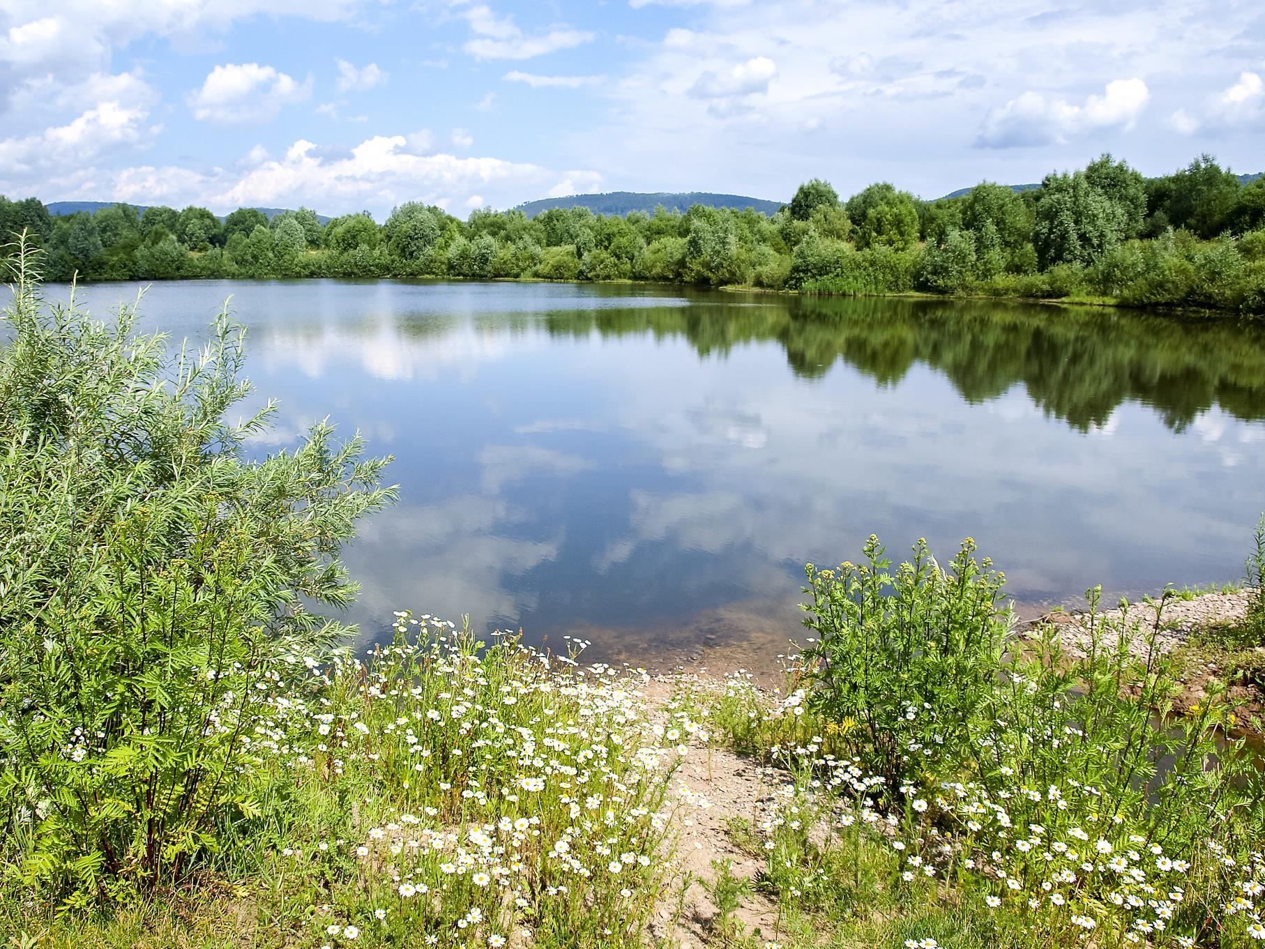 Blick in den hinteren Kiesteich-Bereich im Juli.