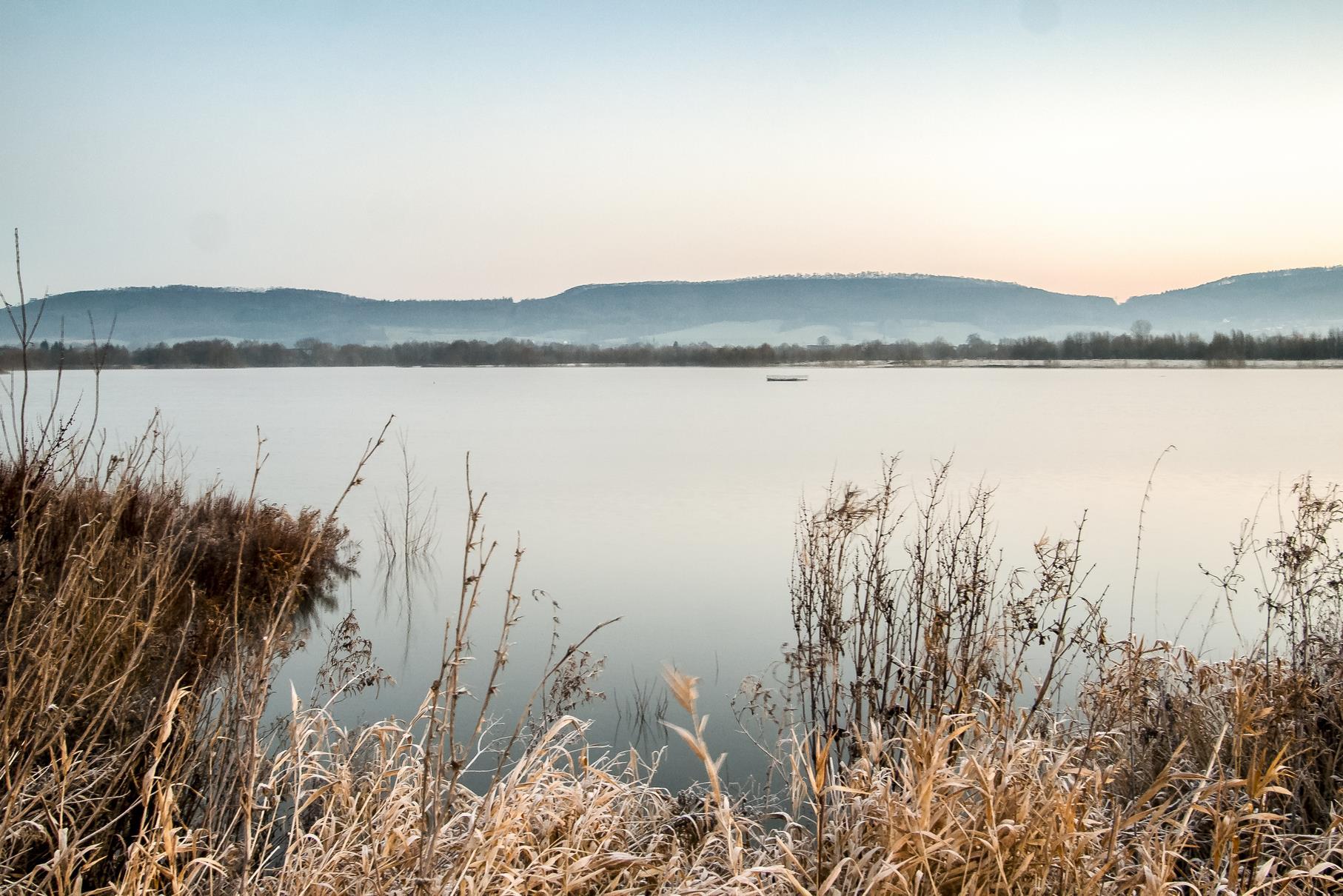 Der westliche Teich an einem kalten Februarmorgen.