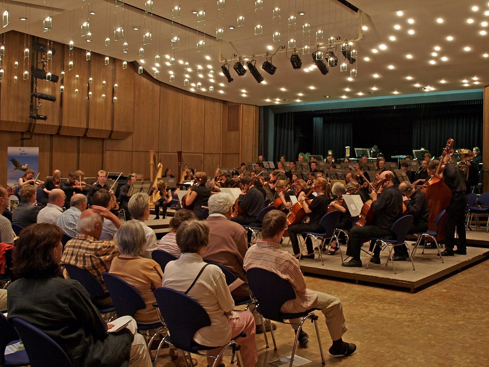 Das Benefiz-Konzert zu Gnsten der Auenlandschaft im Brückentorsaal. - Foto: Kathy Büscher