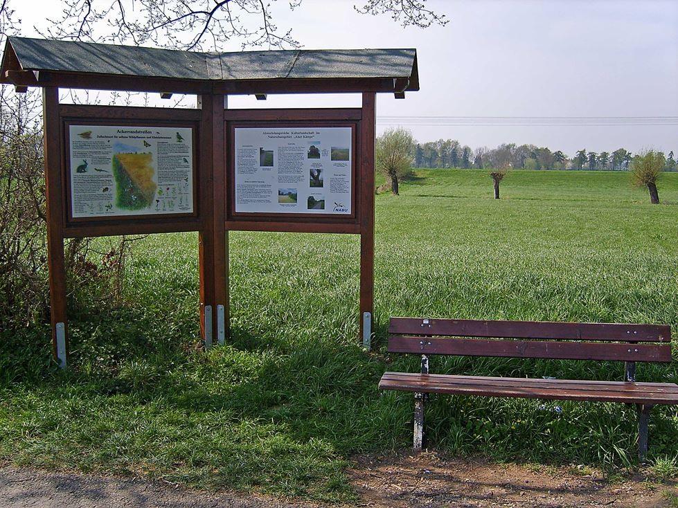 Weitere Schautafeln im NSG Aher Kämpe gibt es zum Gebiet selbst und zu Ackerrandstreifen. - Foto: Kathy Büscher