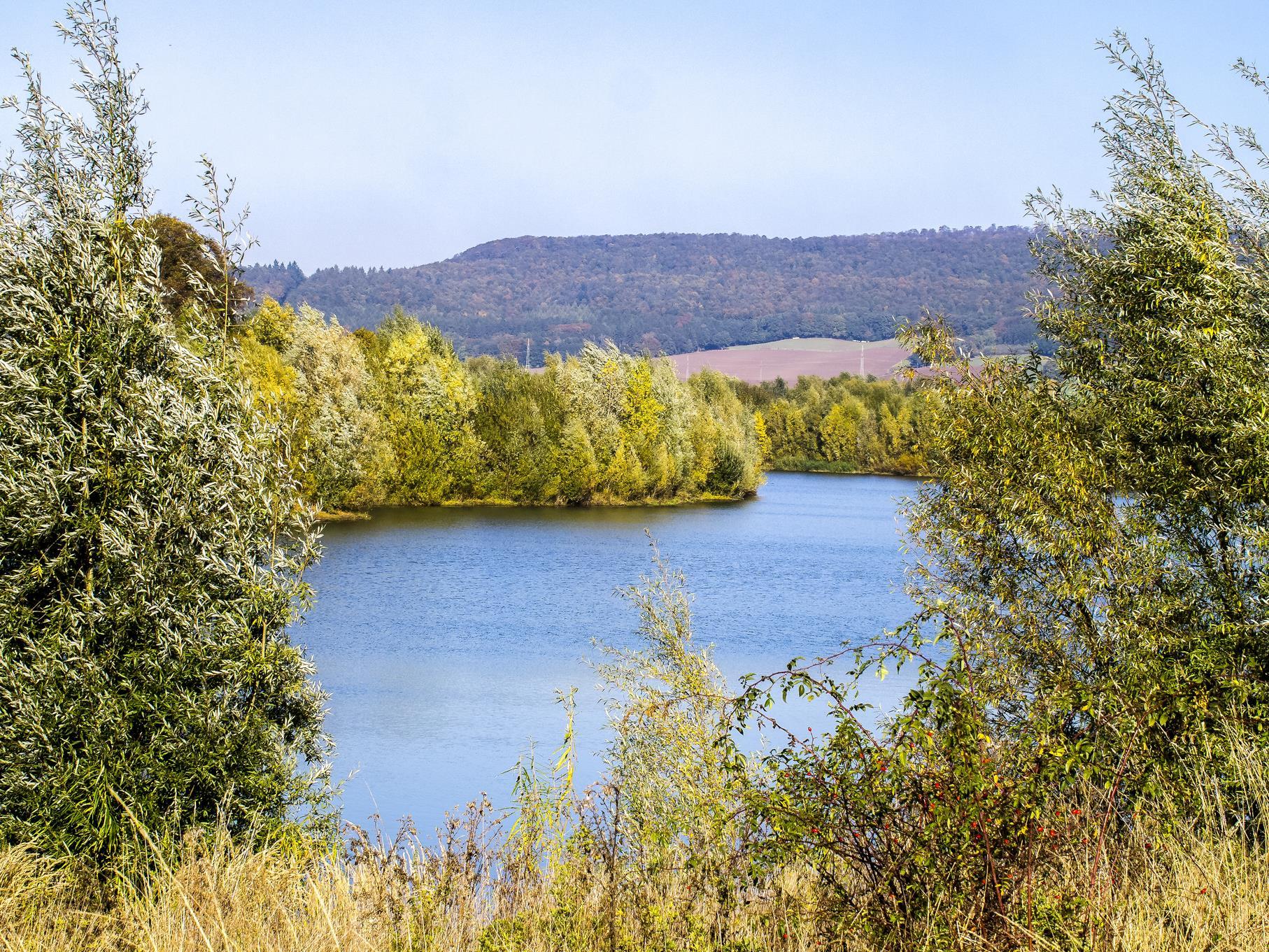 Die Weiden umsäumen den östlichen Teich.