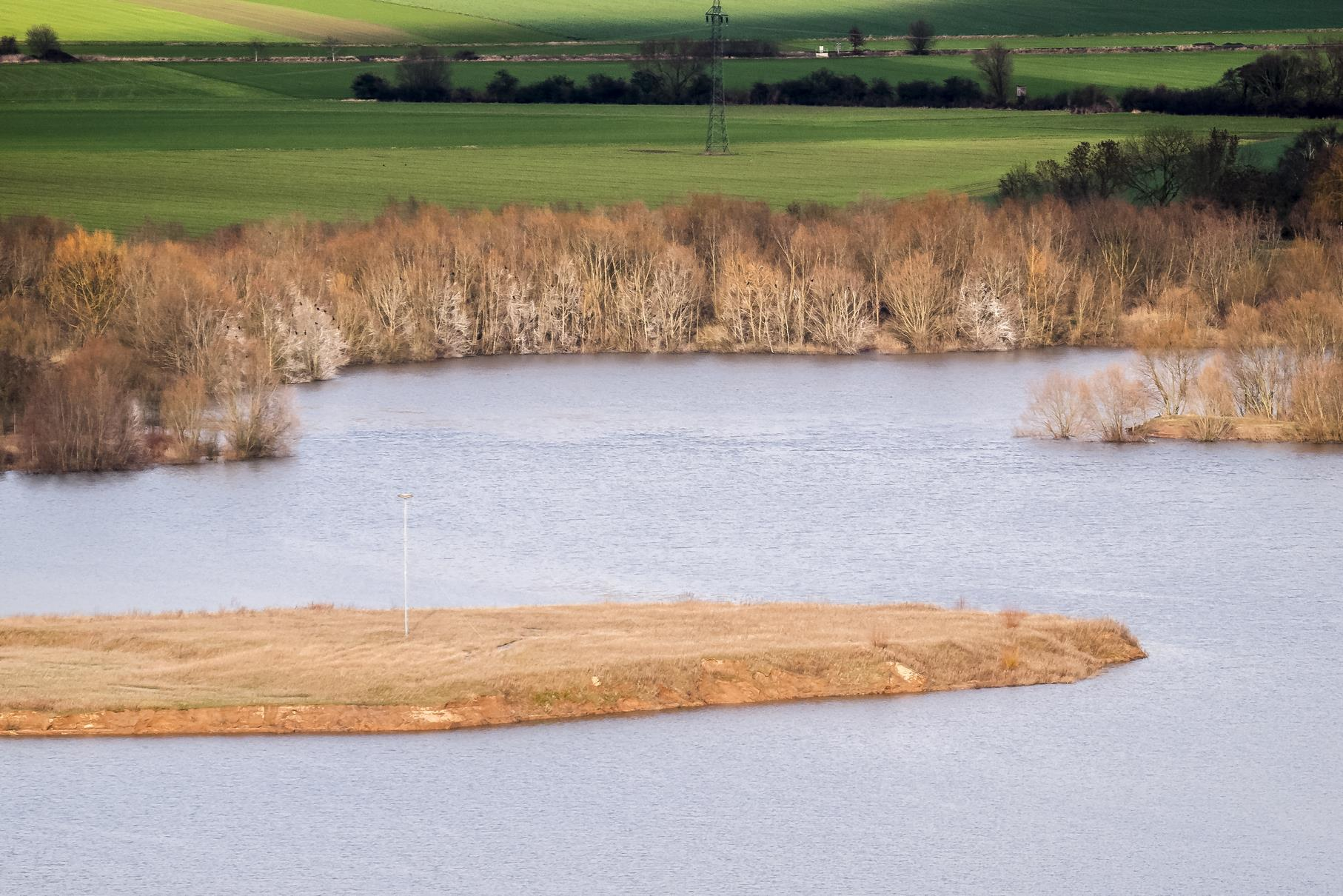 Der westliche Teich von oben. Gut zu erkennen ist die Vogelinsel mit dem Fischadlerhorst.