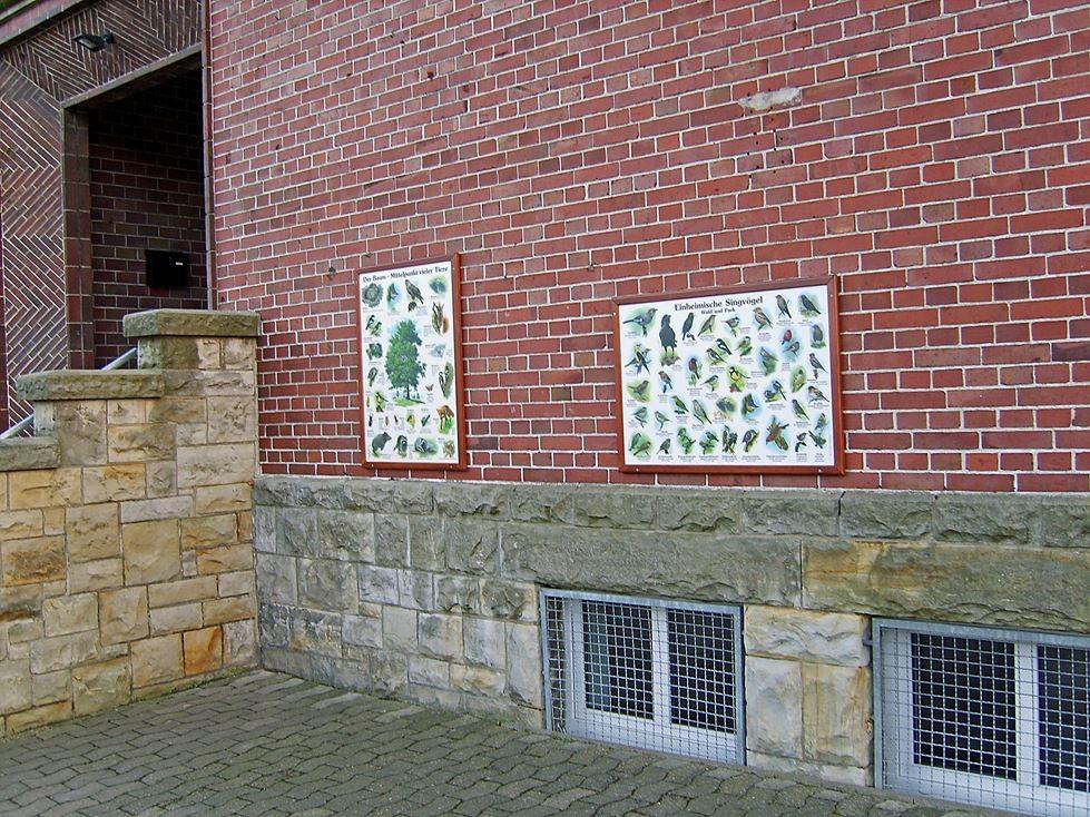 Informationstafeln für die Schüler der Grundschule Steinbergen. - Foto: Kathy Büscher