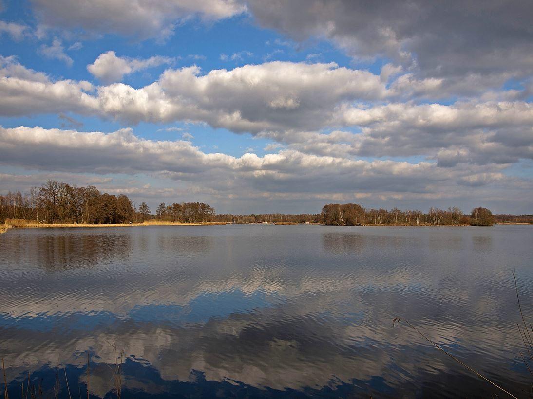 Ausflug an die Meißendorfer Teiche. - Foto: Kathy Büscher