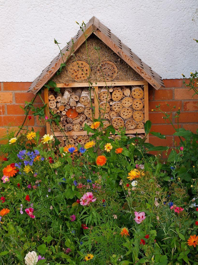 Blumenmischung mit Insektenhotel. - Foto: Kathy Büscher