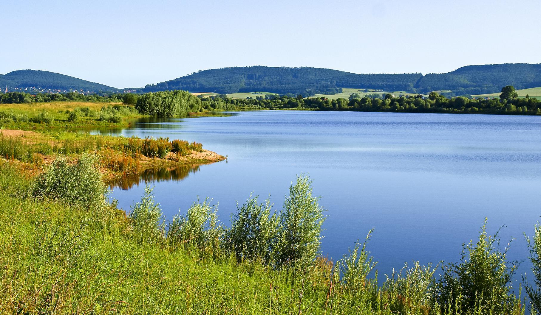 Der mittlere Teich ist mit vielen Pflanzen umsäumt.