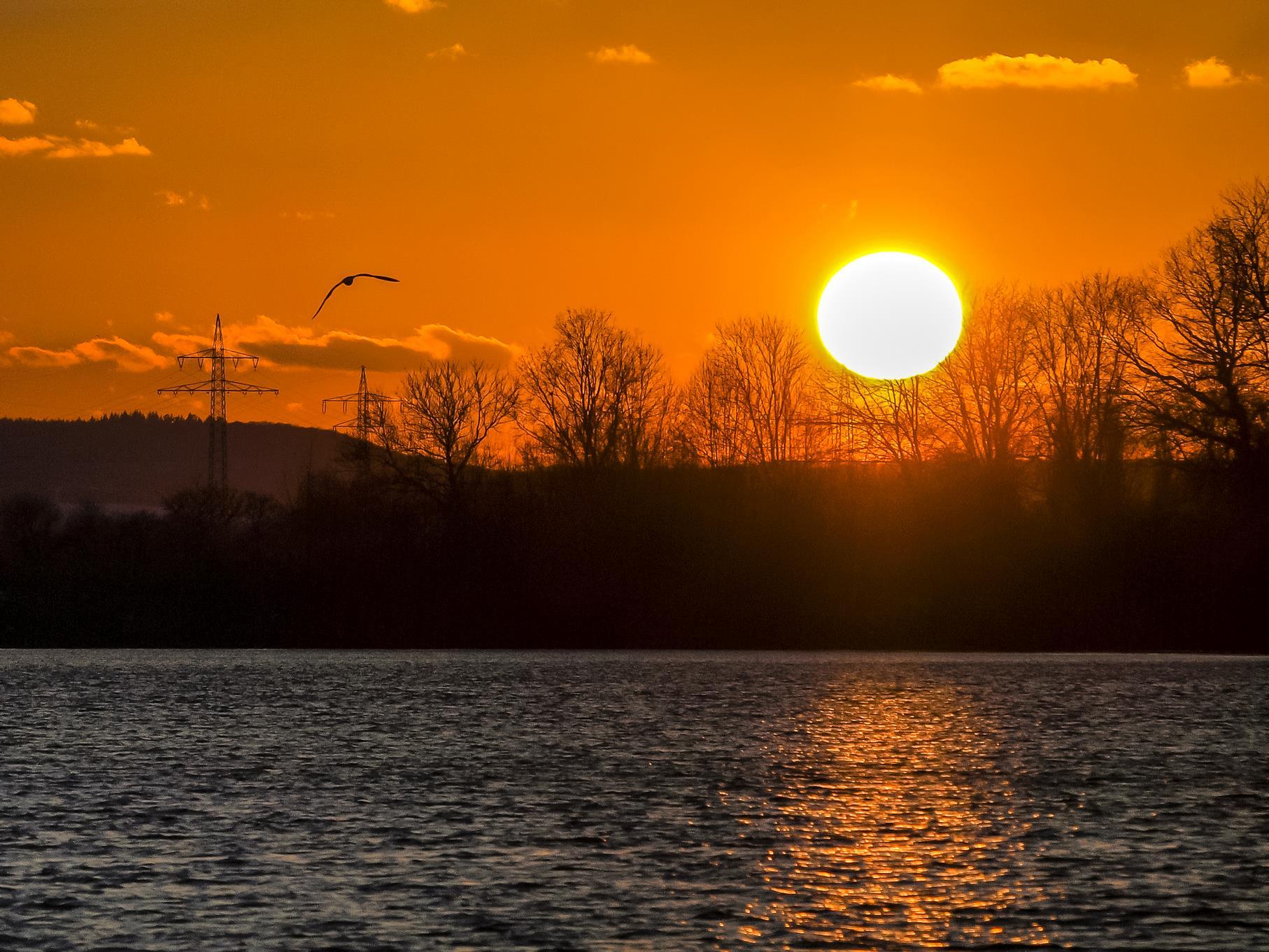 Die Sonne geht als großer Feuerball über der Auenlandschaft unter.