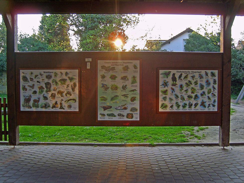 Naturlehrstation an der Grundschule Süd in Rinteln. - Foto: Kathy Büscher