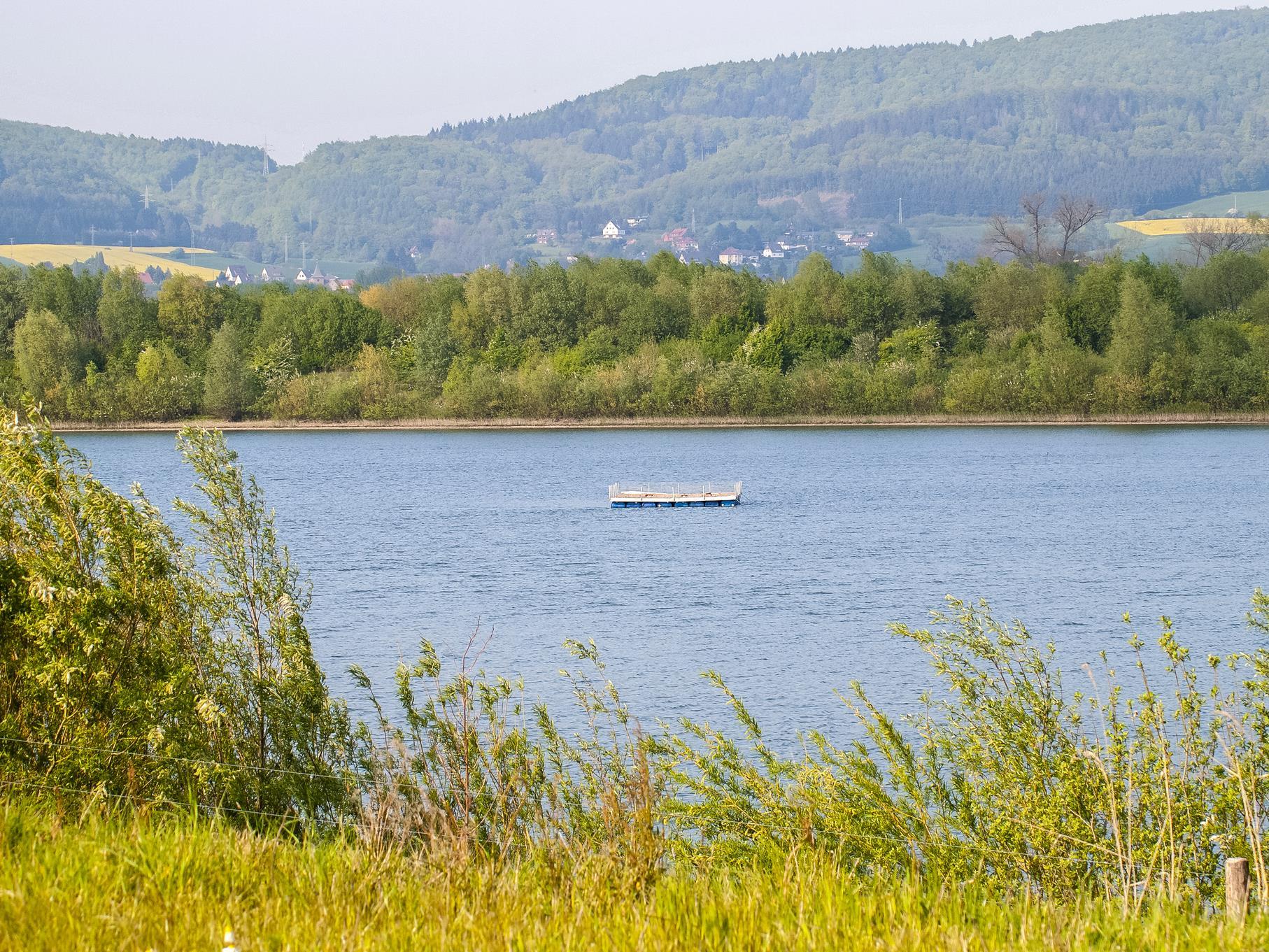 Noch ist das Flussseeschwalbenfloß im mittleren Teich verlassen.
