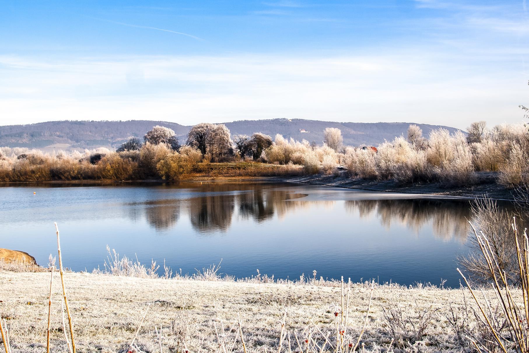 Die Uferbereiche und Bäume sind mit Eis überzogen.