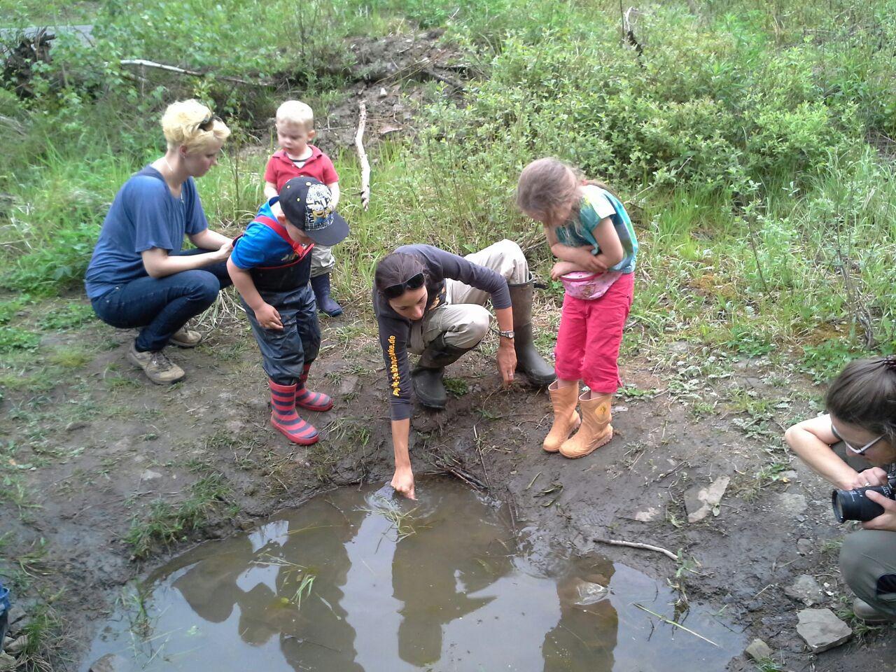Die Kinder schauen in den Tümpeln nach Amphibien. - Foto: Britta Raabe
