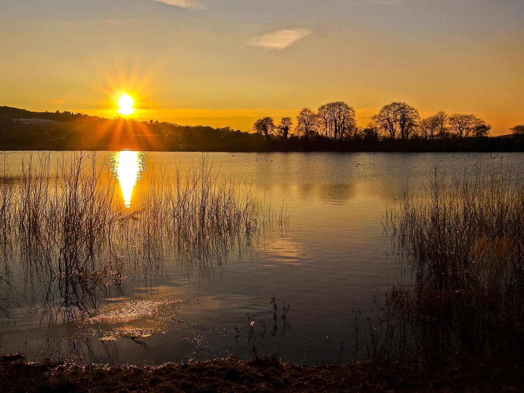 Der kleine östliche Teich bei Hochwasser in der Abendsonne.