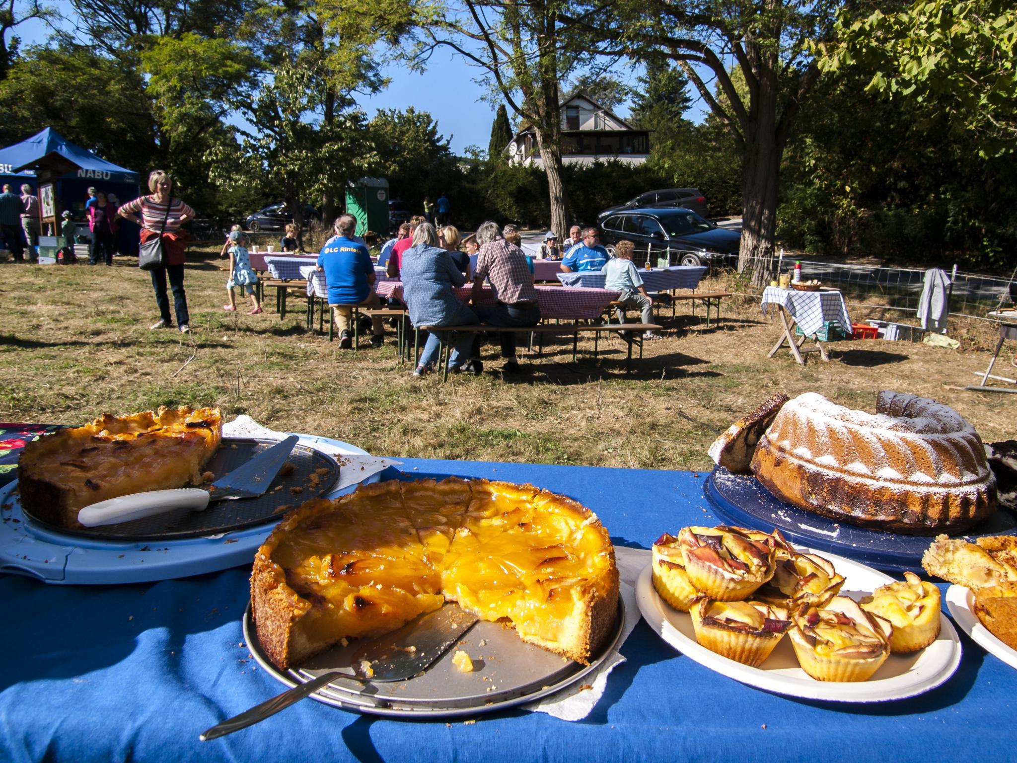 Knapp 20 Kuchen und Torten wurden verkauft. - Foto: Kathy Büscher