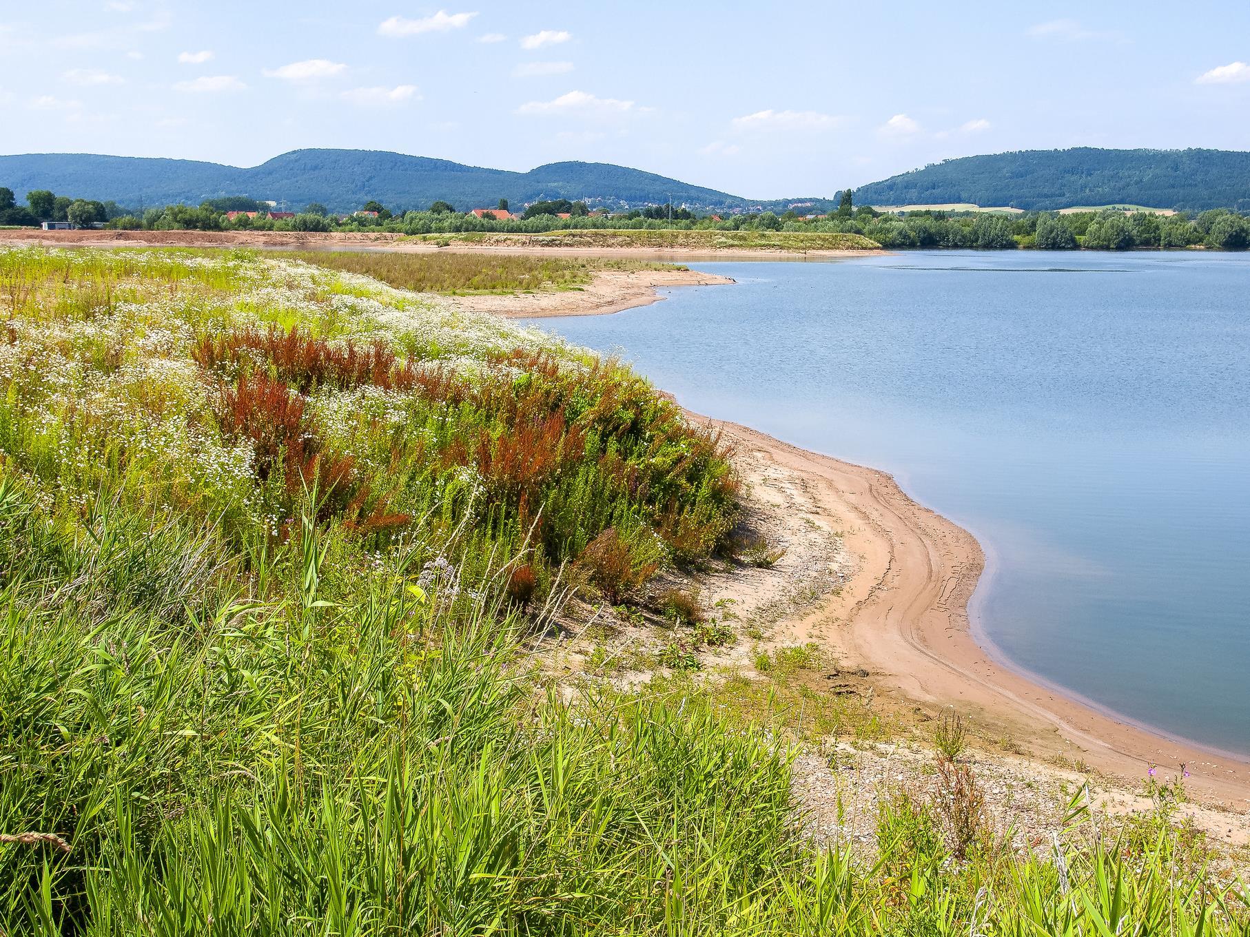 Die Uferbereiche des westlichen Teiches sind abwechslungsreich bewachsen.