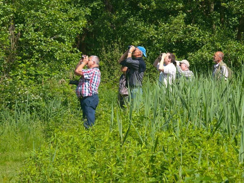 Exkursion mit Vogelbeobachtung an den Meißendorfer Teichen. - Foto: Kathy Büscher