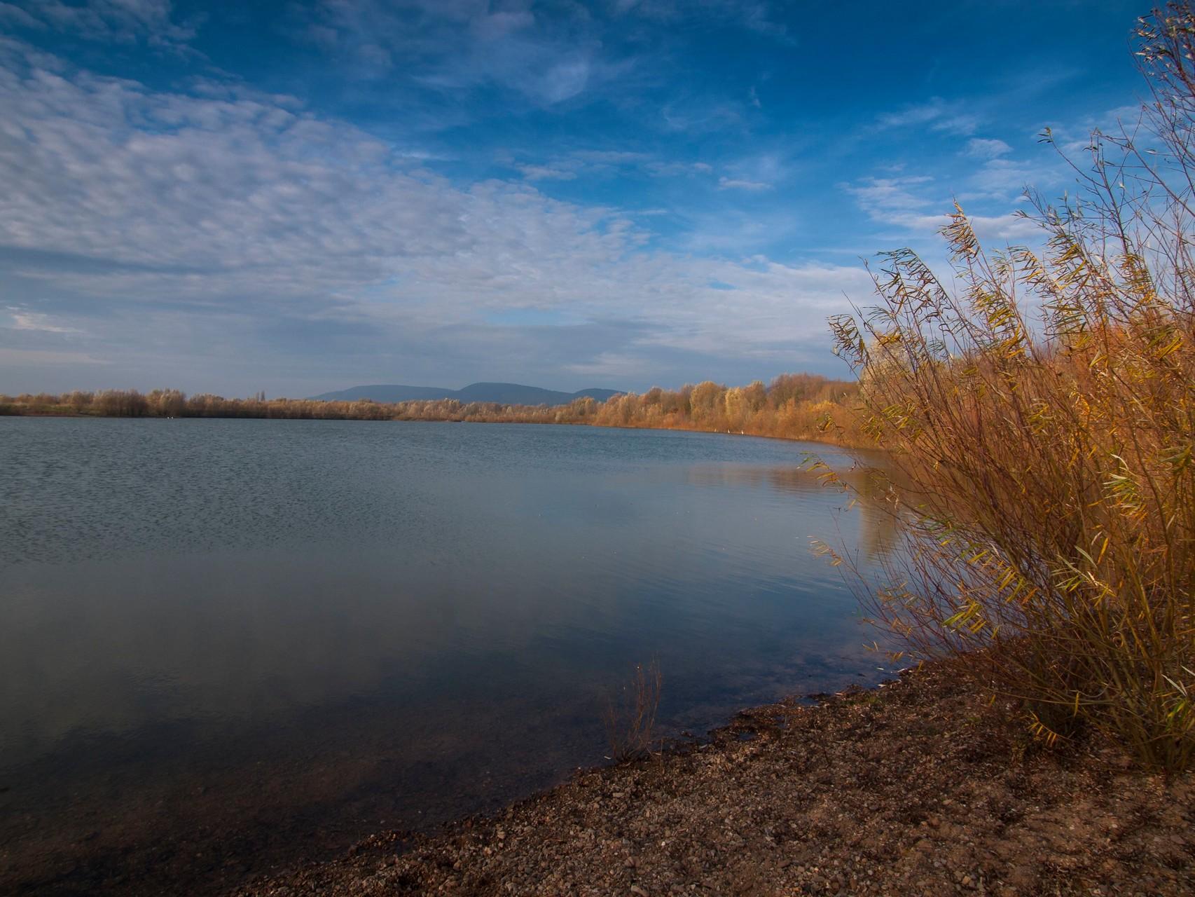 Die Uferbereiche im Herbst. - Foto: Kathy Büscher