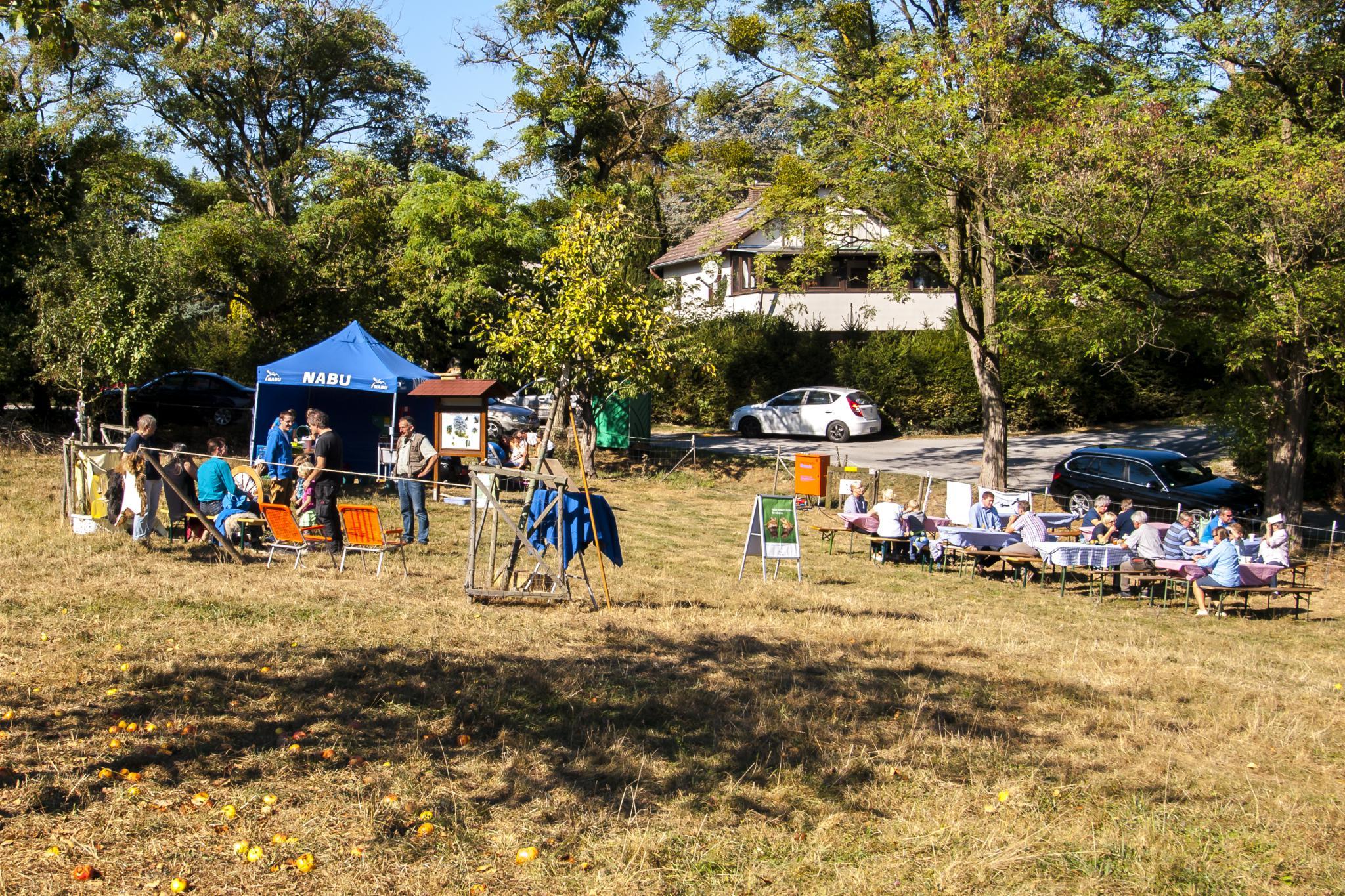 Zahlreiche Besucher kamen zum Apfelfest. - Foto: Kathy Büscher