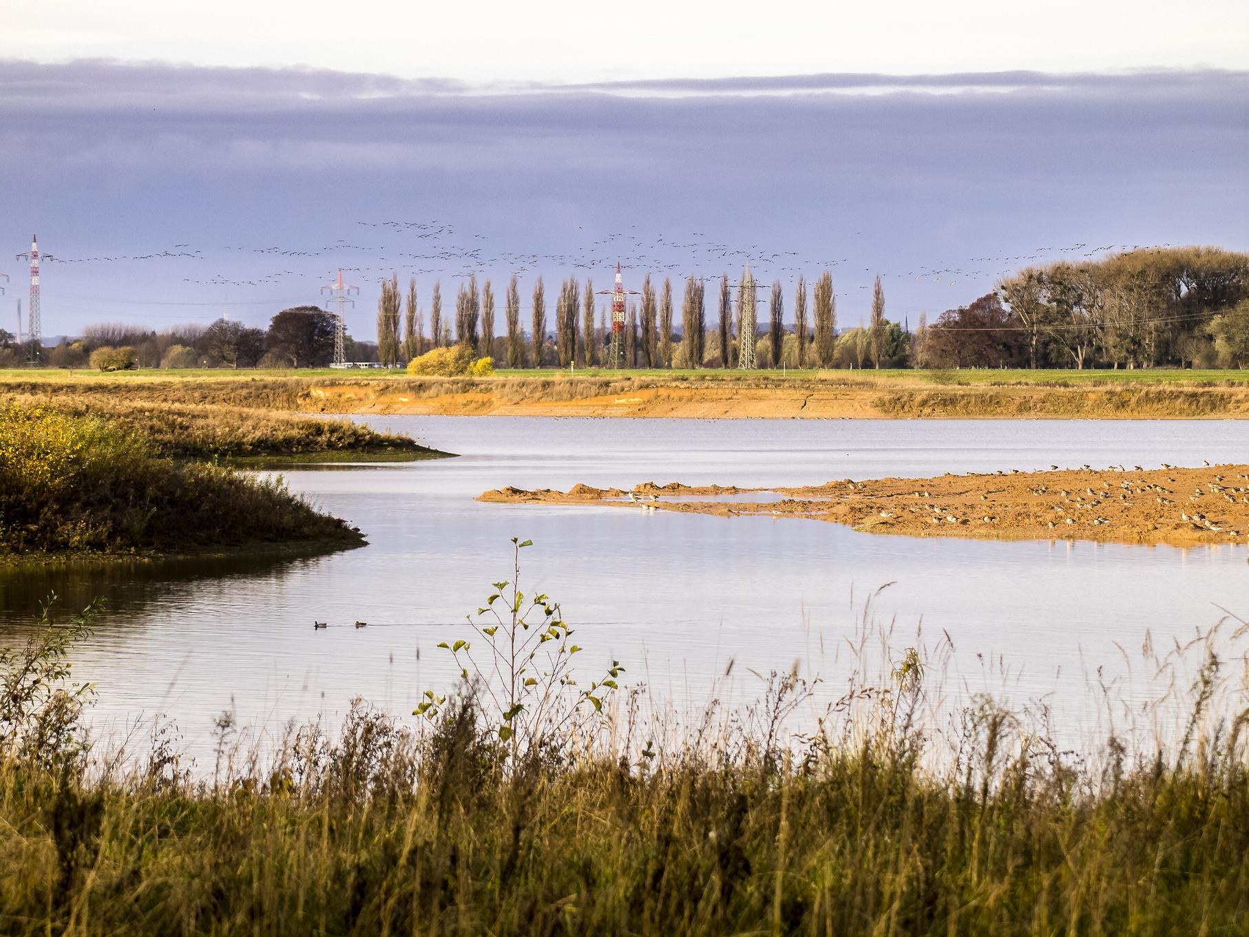 Blick auf den westlichen Teich.