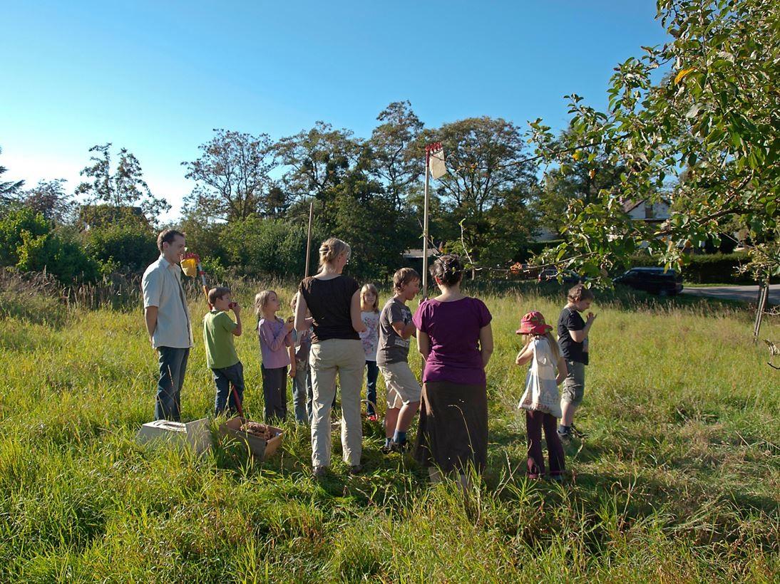 Äpfel pflücken auf der Streuobstwiese Hohenrode. - Foto: Kathy Büscher