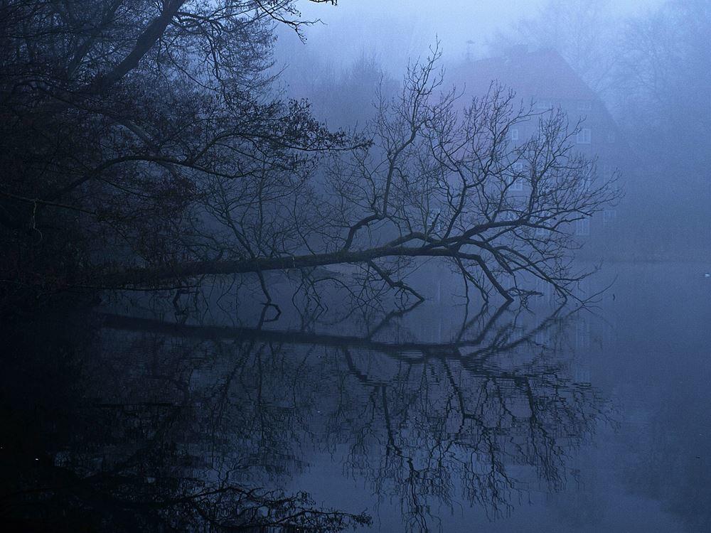 Der Teich hinter dem Herrenhaus am frühen Morgen. - Foto: Kathy Büscher