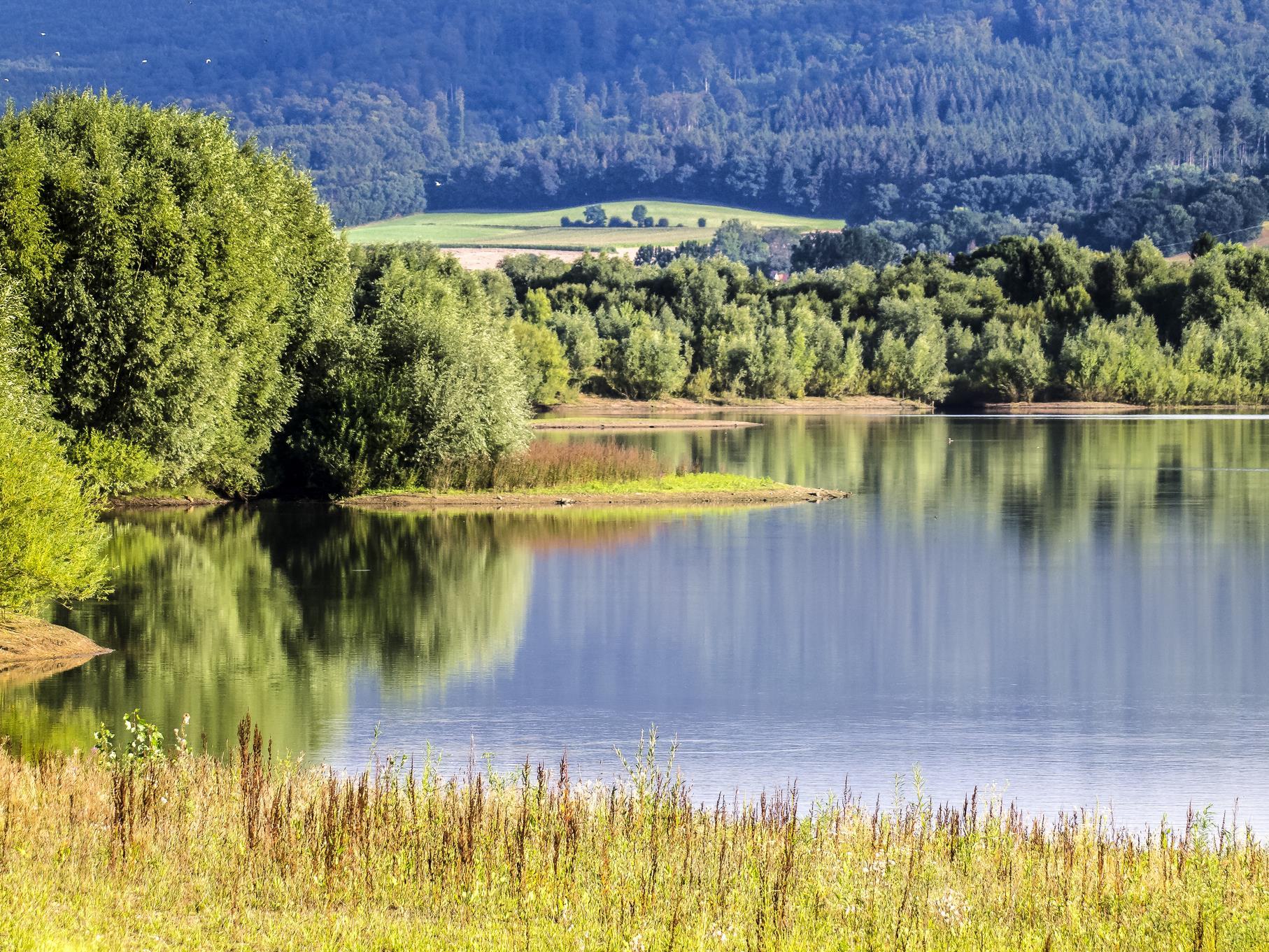 Ruhig präsentiert sich der mittlere Teich an einem Augustmorgen.