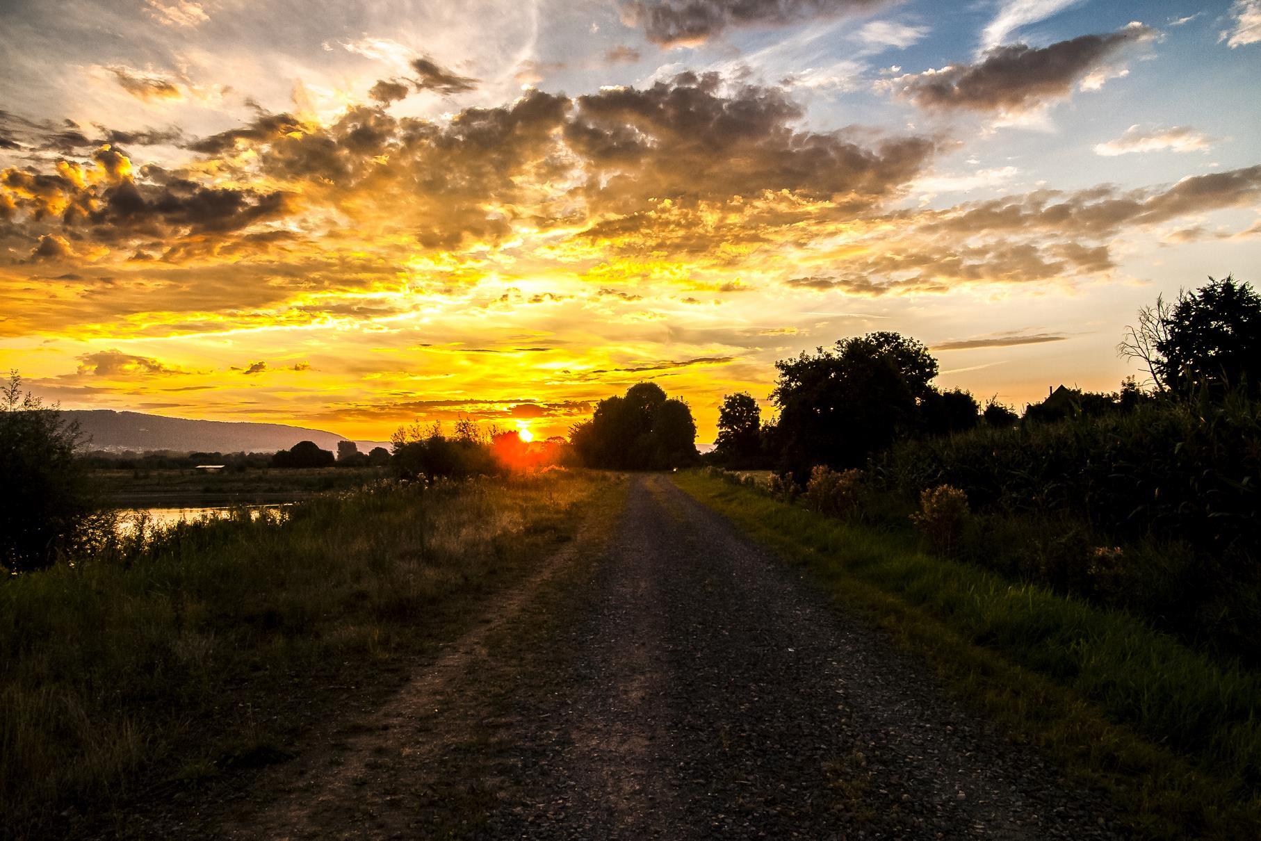 Der Weg vom Schotterparkplatz in die Auenlandschaft beim Sonnenaufgang.