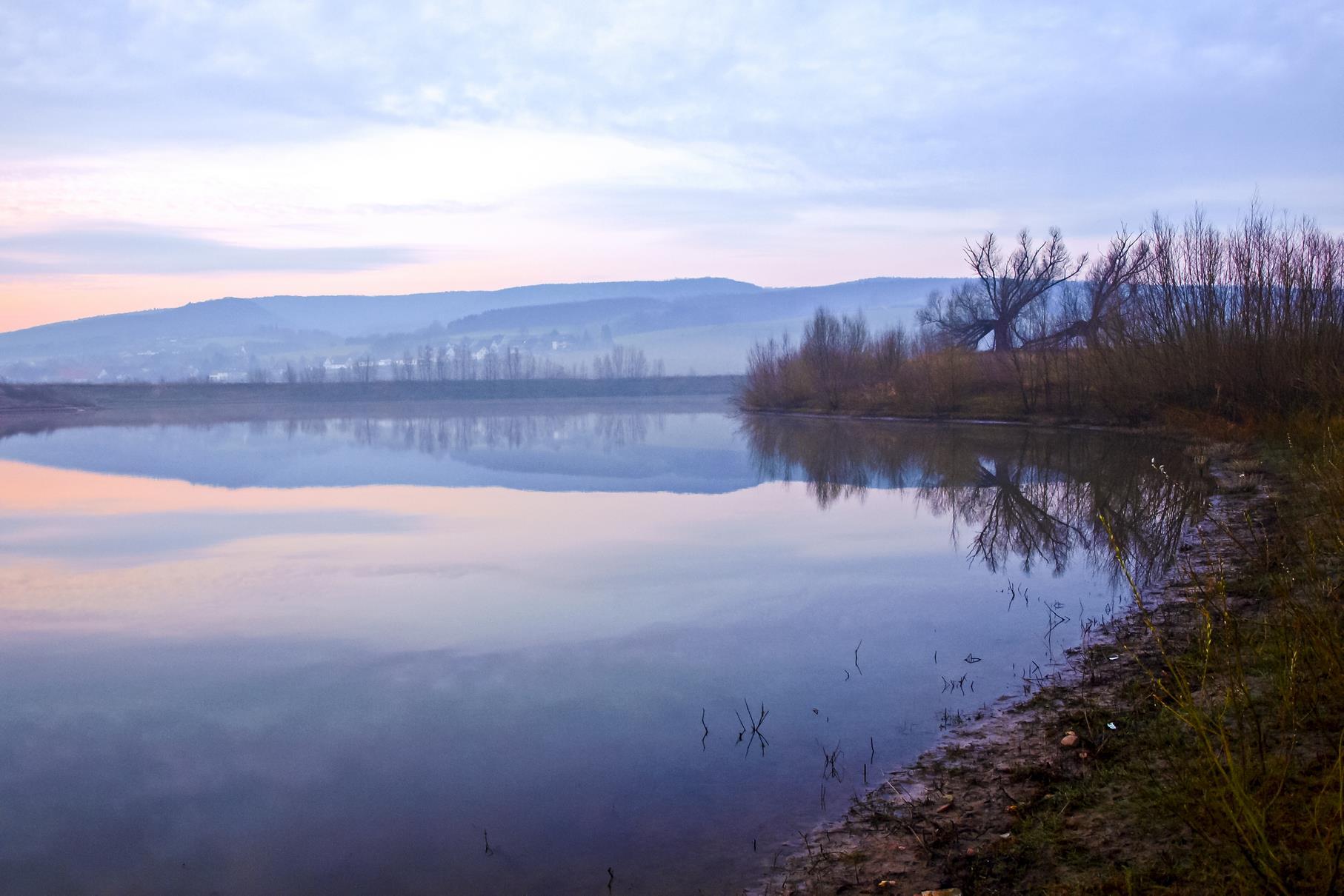 Das Ufer des westlichen Teiches mit den großen Kopfweiden in der Morgendämmerung.